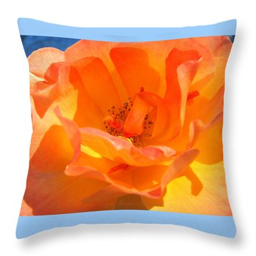 Throw Pillow featuring the photograph Orange Delight by Brooks Garten Hauschild