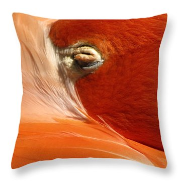 Flamingo Orange Eye Throw Pillow