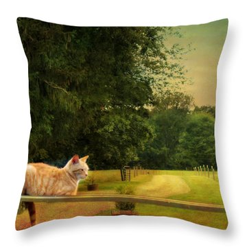 Orange Farm Cat Throw Pillow
