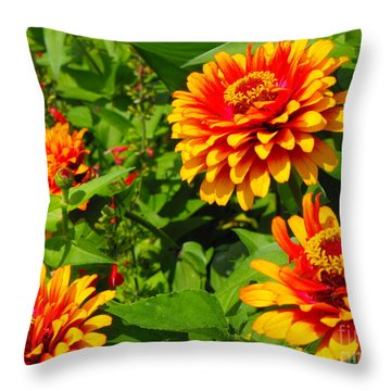 Orange Flower Bloom Throw Pillow by Erick Schmidt