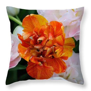 Orange Flower Throw Pillow by Haleh Mahbod