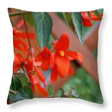 Throw Pillow featuring the photograph Orange Flower by Susanne Baumann