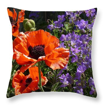Throw Pillow featuring the photograph Orange Flowers by Alan Socolik