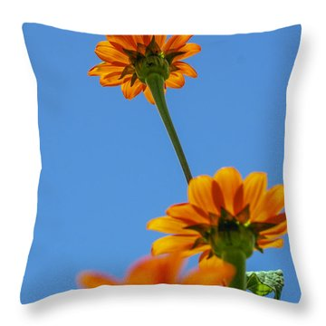 Throw Pillow featuring the photograph Orange Flowers On Blue Sky by Debbie Karnes