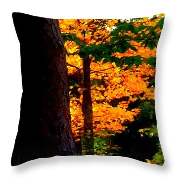 Throw Pillow featuring the photograph Orange Foliage by Denyse Duhaime