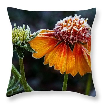 Orange Frosty Throw Pillow