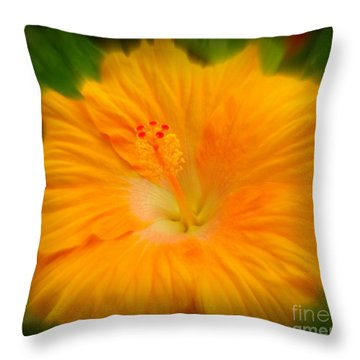 Throw Pillow featuring the photograph Orange Hibiscus Flower by Clare Bevan