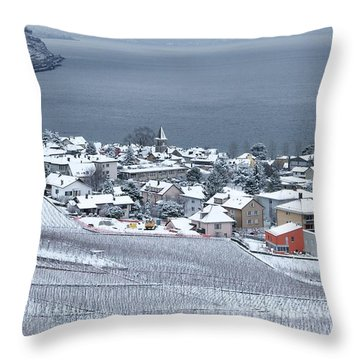 Throw Pillow featuring the photograph Orange House In The Vineyards by Colleen Williams