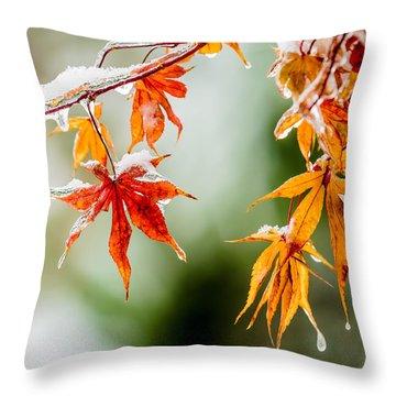 Orange Ice Throw Pillow