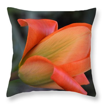 Orange Lady Throw Pillow