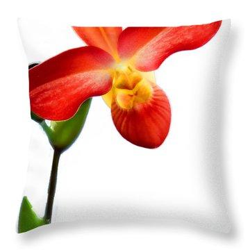 Orange Lady Slipper Throw Pillow