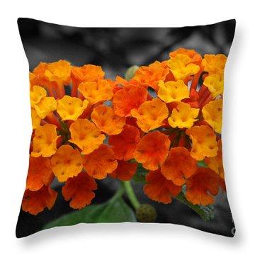 Orange Lantana Throw Pillow
