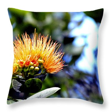 Orange Lehua On Volcano Ranch Throw Pillow