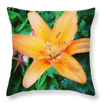 Lilies Throw Pillows