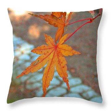 Orange Maple Leaves Throw Pillow by Lorna Hooper