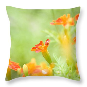Orange Meadow Throw Pillow