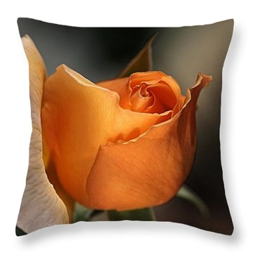 Throw Pillow featuring the photograph Orange Mood by Joy Watson
