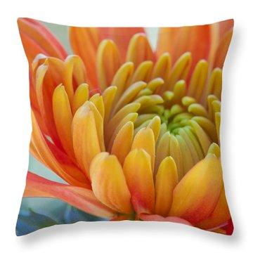 Orange Mum Closeup Throw Pillow