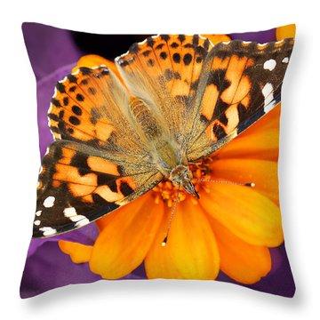 Orange On Purple Throw Pillow
