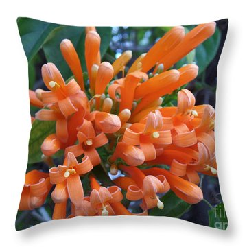 Orange Petals Throw Pillow