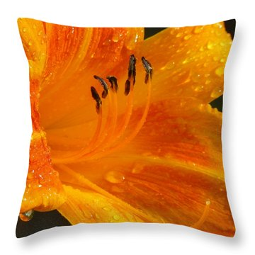 Orange Rain Throw Pillow by Karen Wiles