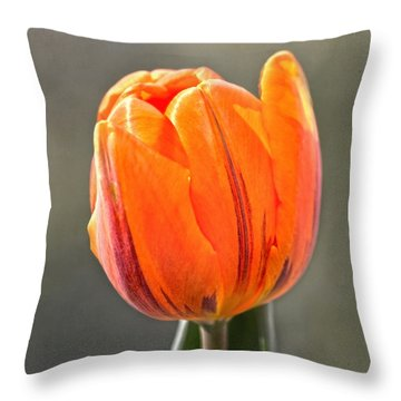 Orange Red Tulip Square Throw Pillow by Sandi OReilly