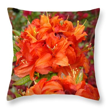Orange Rhododendron Flowers Art Prints Throw Pillow by Baslee Troutman