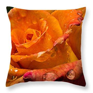 Orange Rose Drops Throw Pillow