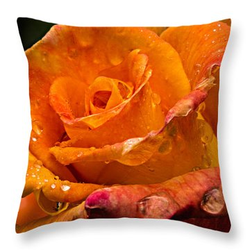 Orange Rose Drops Throw Pillow