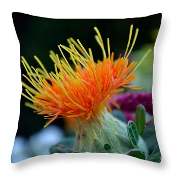 Orange Safflower Throw Pillow