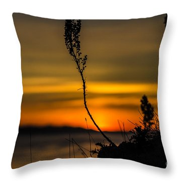 Orange Sunset Throw Pillow by Arlene Sundby