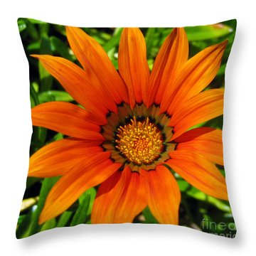 Throw Pillow featuring the photograph Orange Sunshine by Janice Westerberg