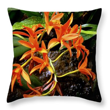 Orange Tendrils Throw Pillow by Rodney Lee Williams