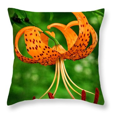 Orange Tiger Lily Throw Pillow