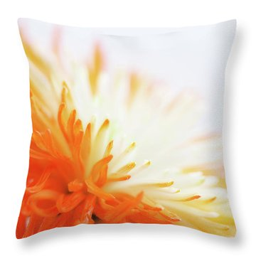 Orange Whisper Throw Pillow by Lisa Knechtel