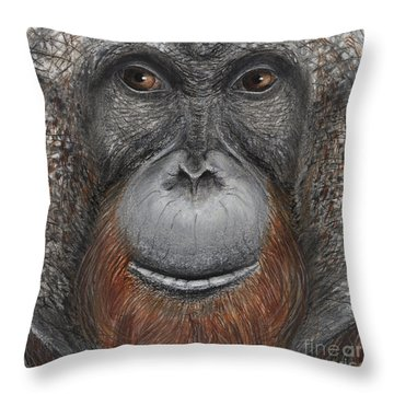 Orangutan Face - Orang-utan  - Orangutang - Orang-utang - Fine Art Print - Stock Illustration Throw Pillow