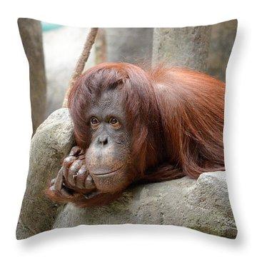 Orangutans Day Throw Pillow