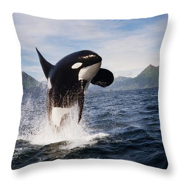 Orca Breach Throw Pillow