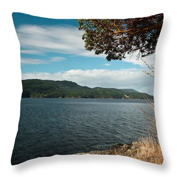 Orcas Dreams Throw Pillow