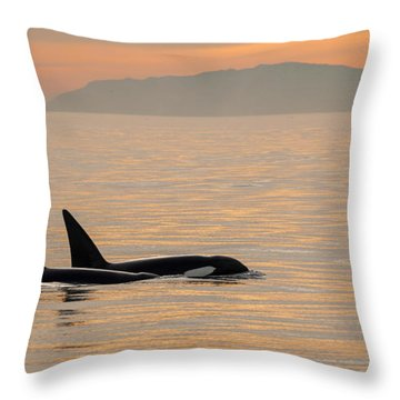 Orcas Off The California Coast Throw Pillow