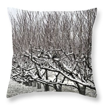 Orchard In Winter Throw Pillow