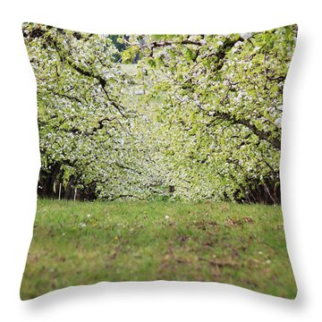 Throw Pillow featuring the photograph Orchard by Patricia Babbitt
