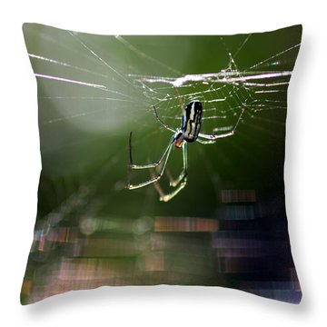 Throw Pillow featuring the photograph Orchard Web by Greg Allore