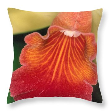Orchid 16 Throw Pillow