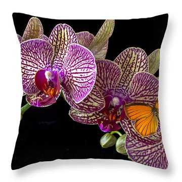 Orchid And Orange Butterfly Throw Pillow by Garry Gay