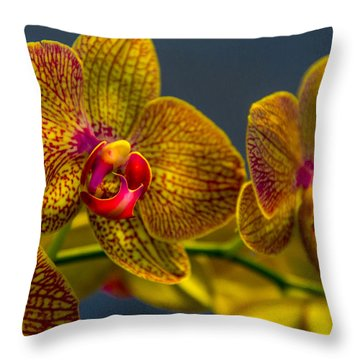 Orchid Color Throw Pillow by Marvin Spates