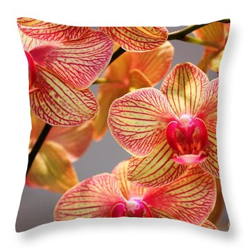 Orchid Throw Pillow by Judy Palkimas
