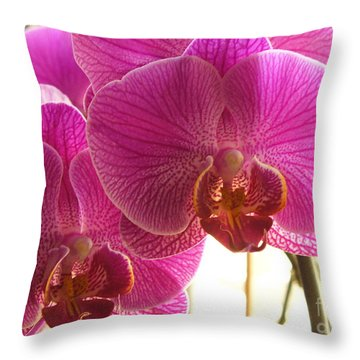 Throw Pillow featuring the photograph Orchid by Lingfai Leung