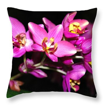 Fuschia Fiesta Throw Pillow