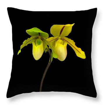 Orchid Paphiopedilum Druid Spring Throw Pillow by Susan Wiedmann